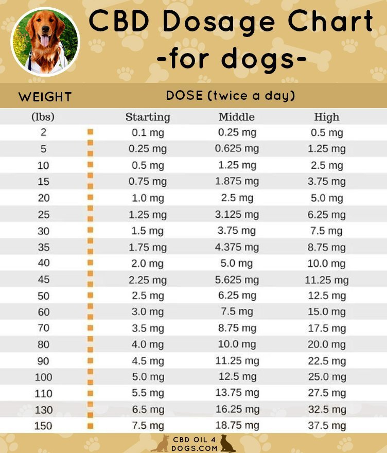 educational: a chart displaying CBD dosage for dogs of different weights