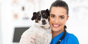 analogizes the happiness and security a pet feels when given proper care